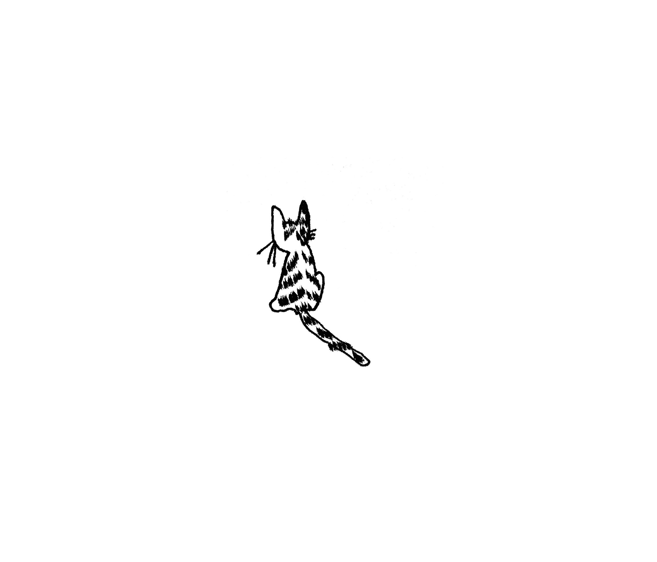 small cats 3.png