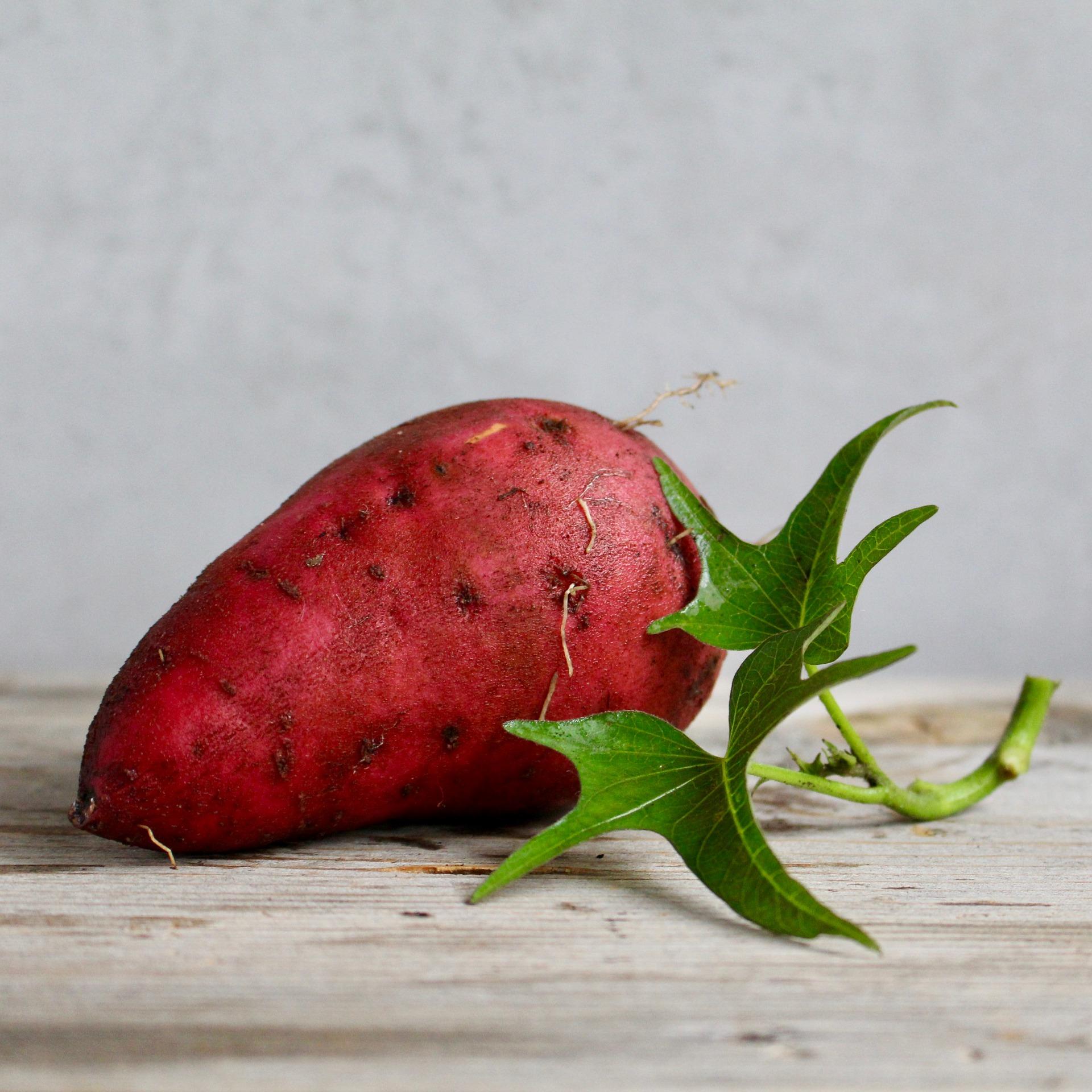 sweet-potato-2086784_1920.jpg