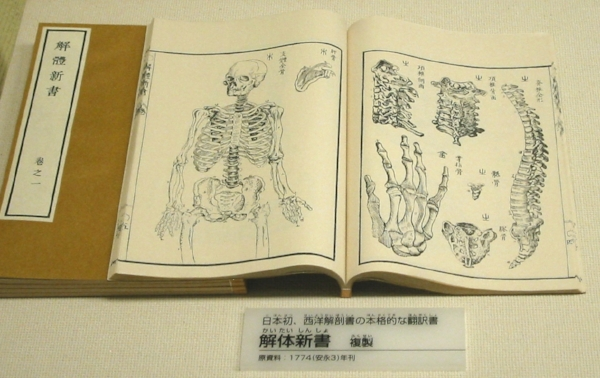 The New Text on Anatomy
