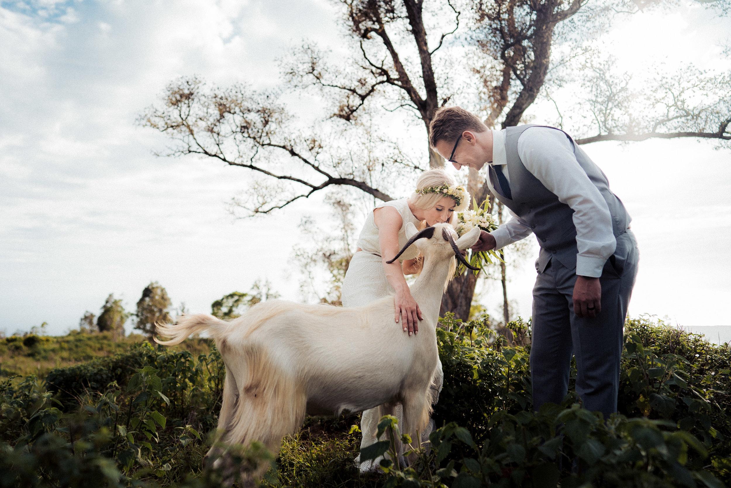Hawaii Wedding Photographer Toshi Takahashi 1.jpg