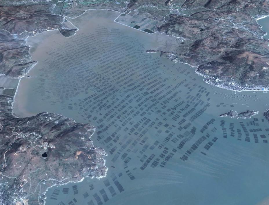 Seaweed farm.jpg