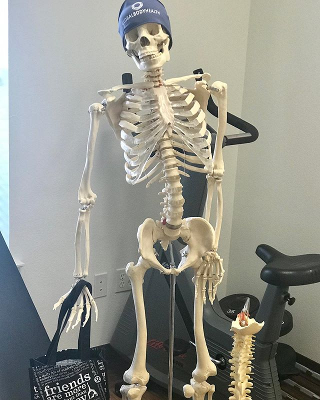Dr. B-Dog Bones is ready to head down to Austin, Texas tomorrow. We will be teaching @baptistepoweryogaaustin educating! Dr. T and I both love doing what we do.  Grateful. 🙌♥️🙌 See you Soon 🤩@annamcnalliejohnston @thomasjohnston98 • • • #yogadoctor #worldchanger #impactpreneuer #educate #share #shine #yoga #yogateachertraining  #yogaanatomy #physiolology #injuryprevention #austinyoga #globalbodyhealth #kristitayloryoga #baptistepoweryogaaustin