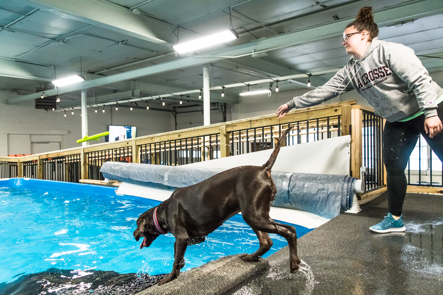 Tilly plays fetch with her owner Liz Haal, Union Grove, once she has swimming down at Club Aqua Paws in Downtown Racine Thursday afternoon.
