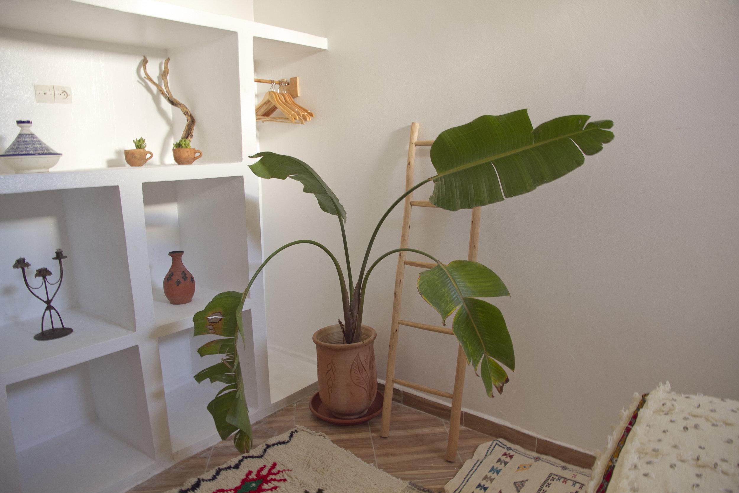 Handira room simple luxury at Amayour Surf