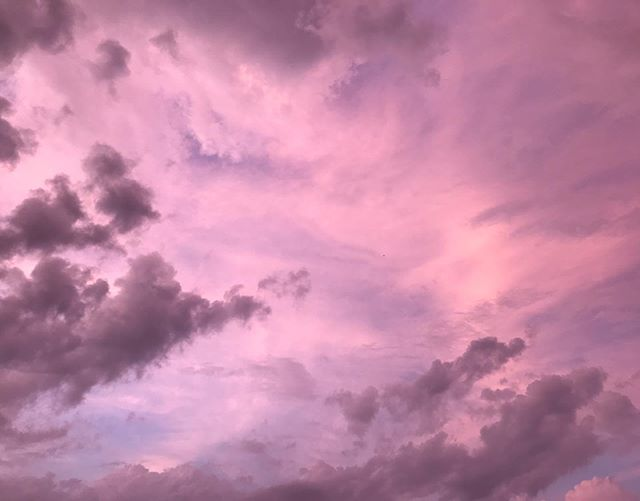 evening sky 🌸 @southernwildfoodforest #nofilter