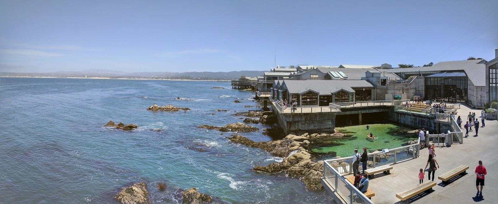 Monterey-bay-aquarium-review.jpg