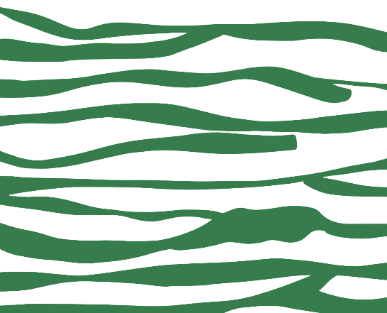 GREEN STRIPE OPTION.PNG