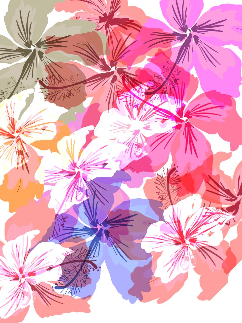 florida florals.png