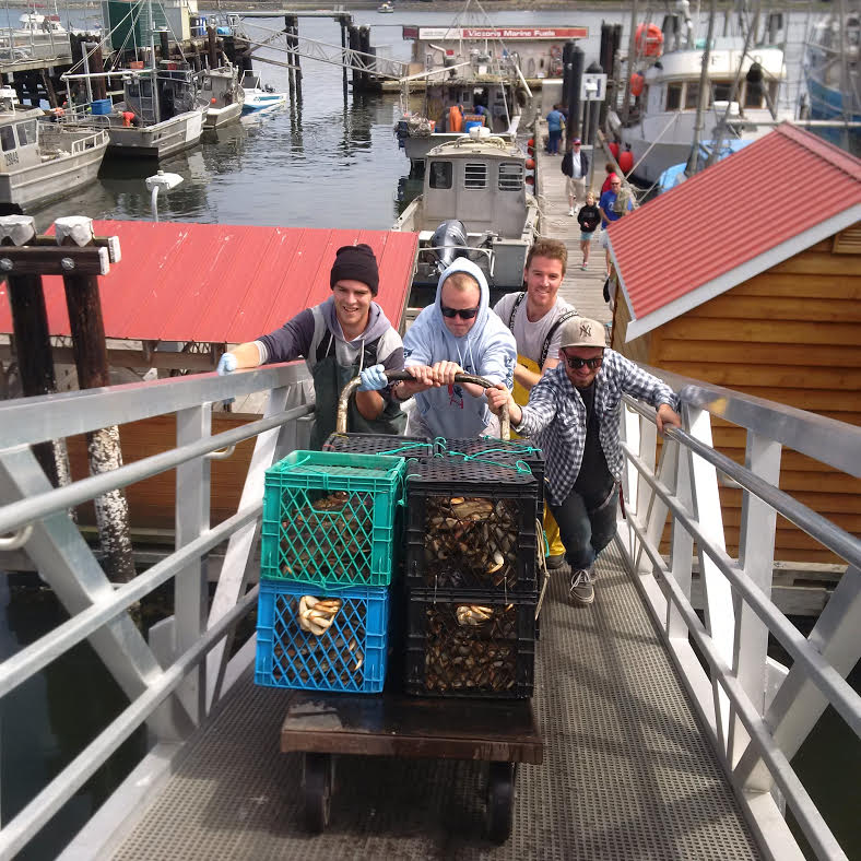 HGS crew hustling crab up the ramp at Fisherman's Wharf. Low tide is your enemy!