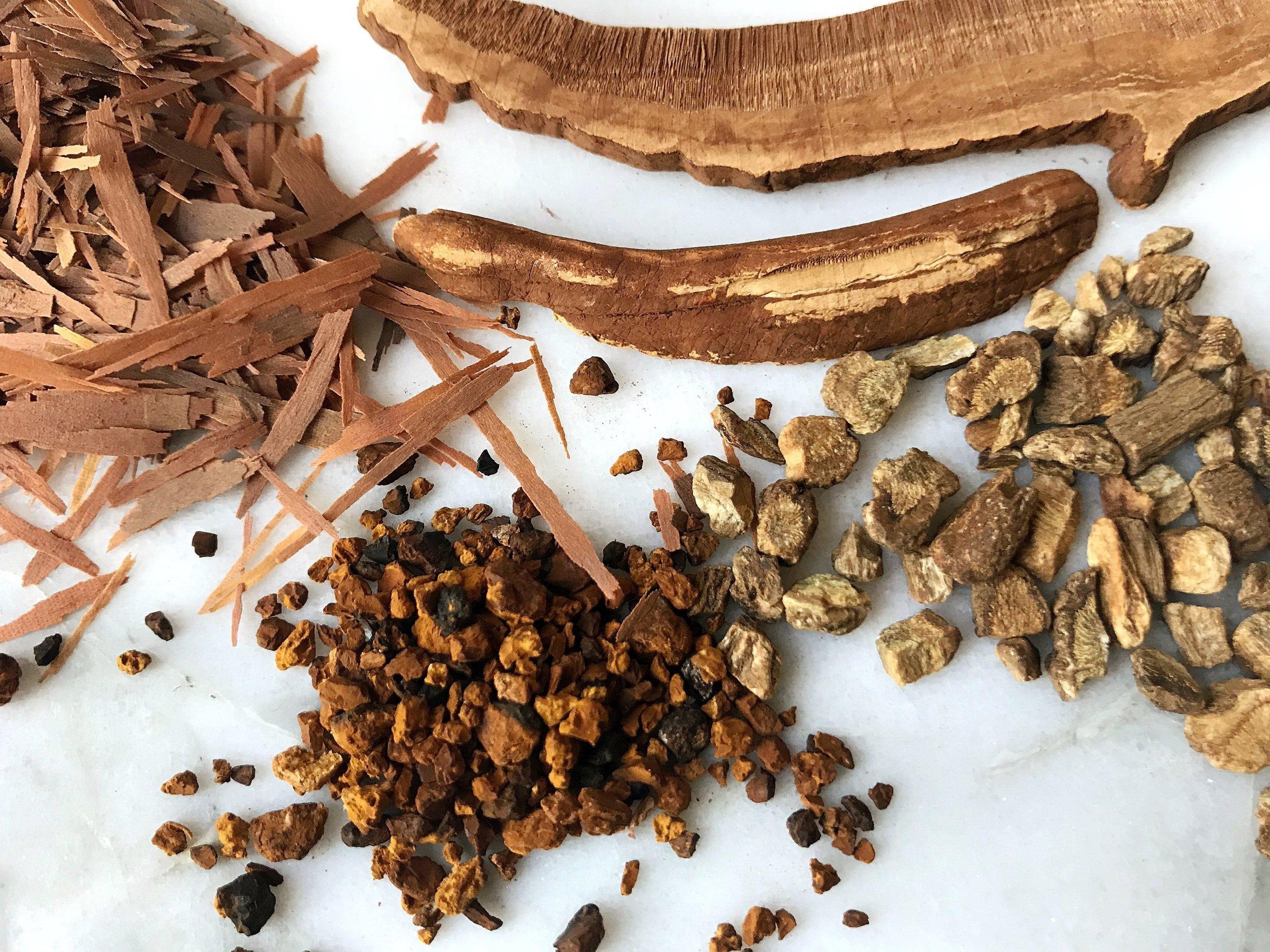 Morning Mushroom Magic Tonic Recipe by Wild Sun Wellness, Adaptogenic Herbal Blends