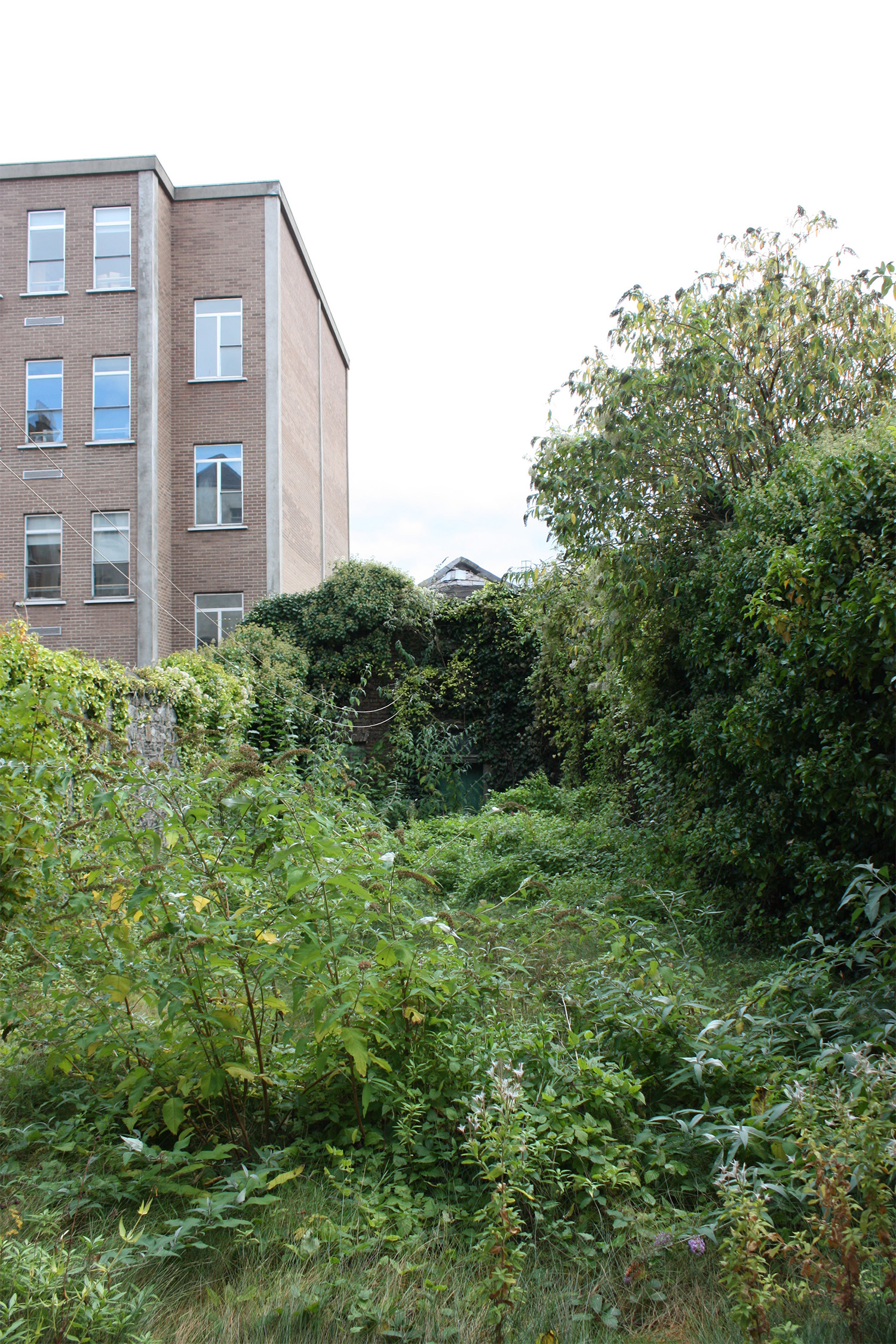 Ruined coach house just visible at end of D2 Townhouse's garden in centre of Dublin, prior to restoration