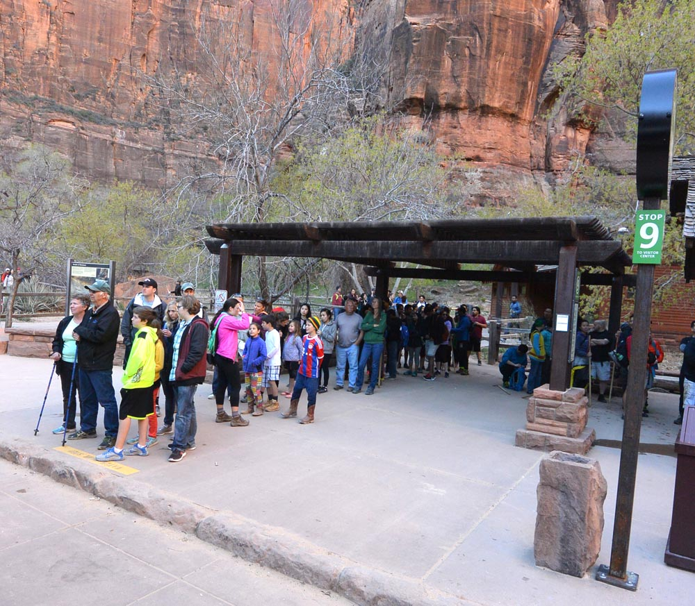 Spring has Sprung – late afternoon bus lineup