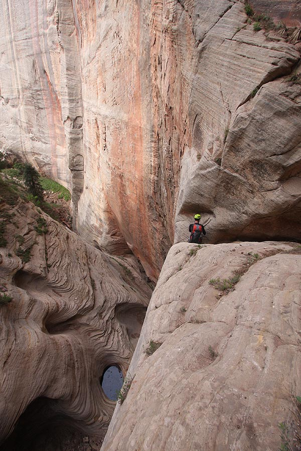 Looking downcanyon in Telephone. (Zion)