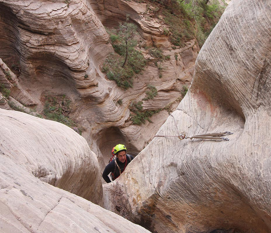 Yup, looks like a rope-chewer for sure! (Zion)