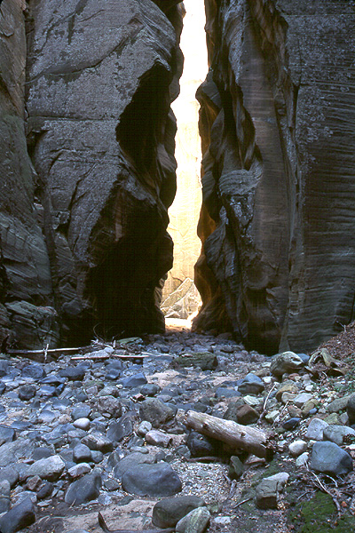 #9911 Narrows in Kolob - (difficult exposures) (Zion)