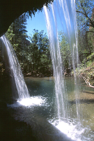 #9944 Double Falls - messy, not clean. (Zion)