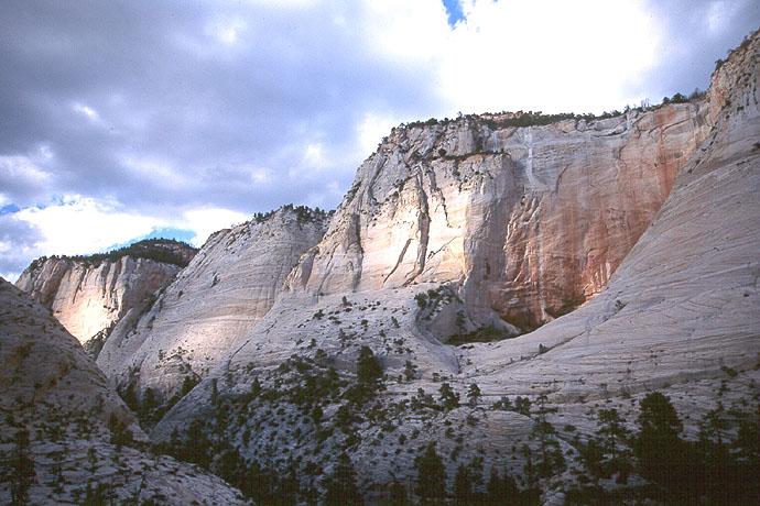 #9943 West Rim Escarpment from the Upper Right Fork (Zion)
