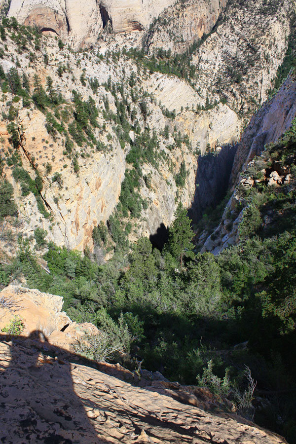 Looking down into the canyon