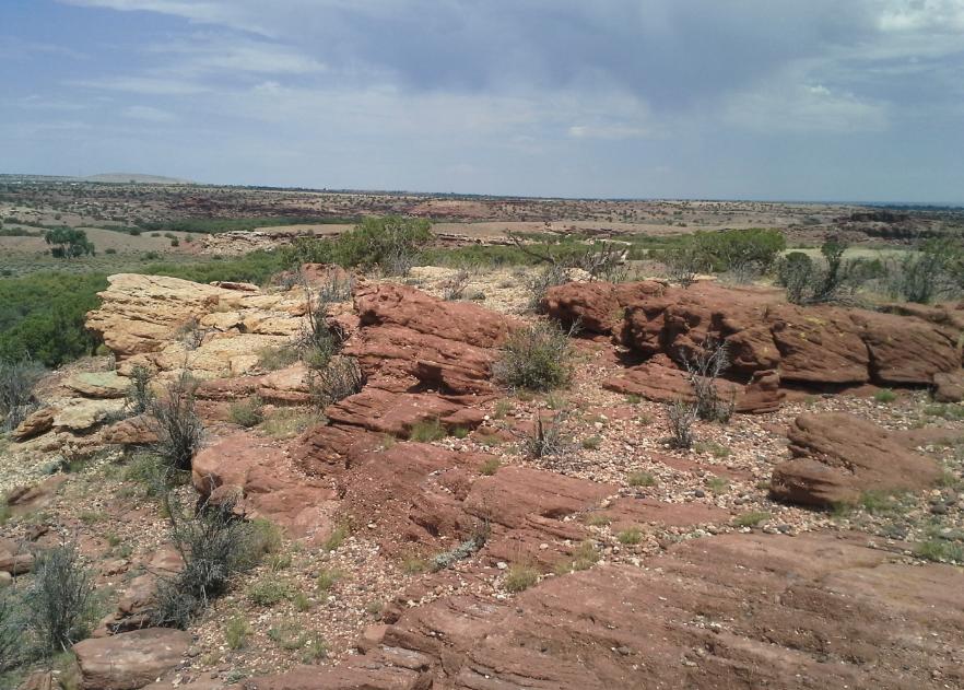Northern Arizona Desert; image courtesy Wikimedia Commons