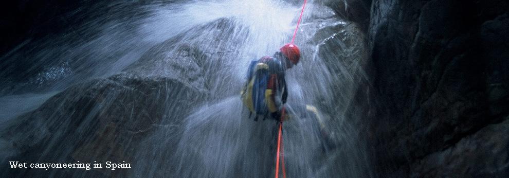 wetness.jpg