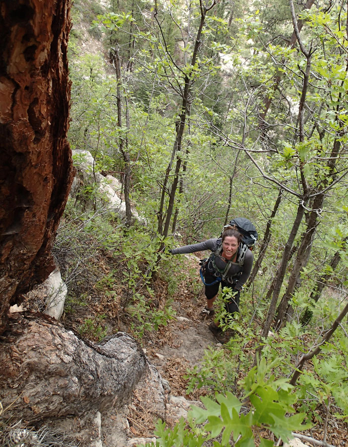 Steep hiking up the MIA.