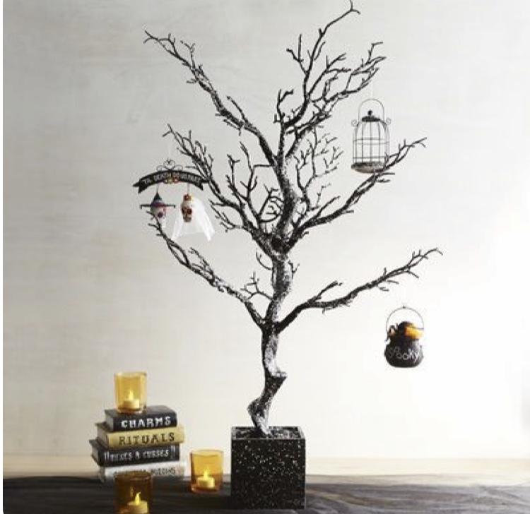 spooly+tree.jpg