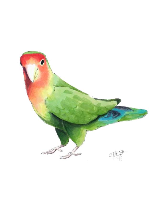 bird-portrait-morgan-swank-studio.jpg