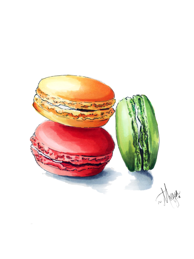 macarons-illustration-morgan-swank-studio.jpg