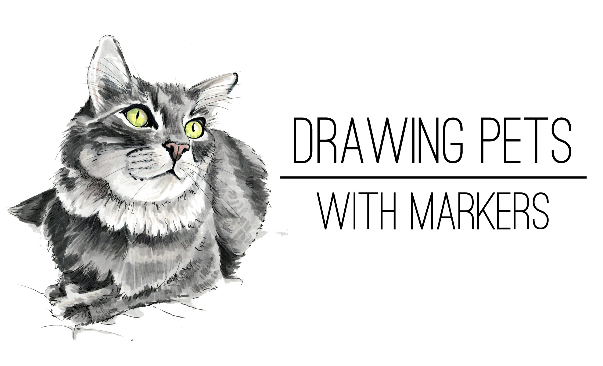 drawing-pets-with-markers.jpg