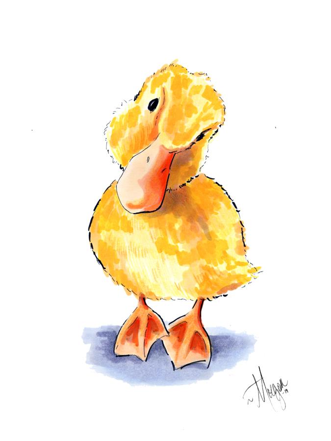 duck-drawing-morgan-swank-studio.jpg