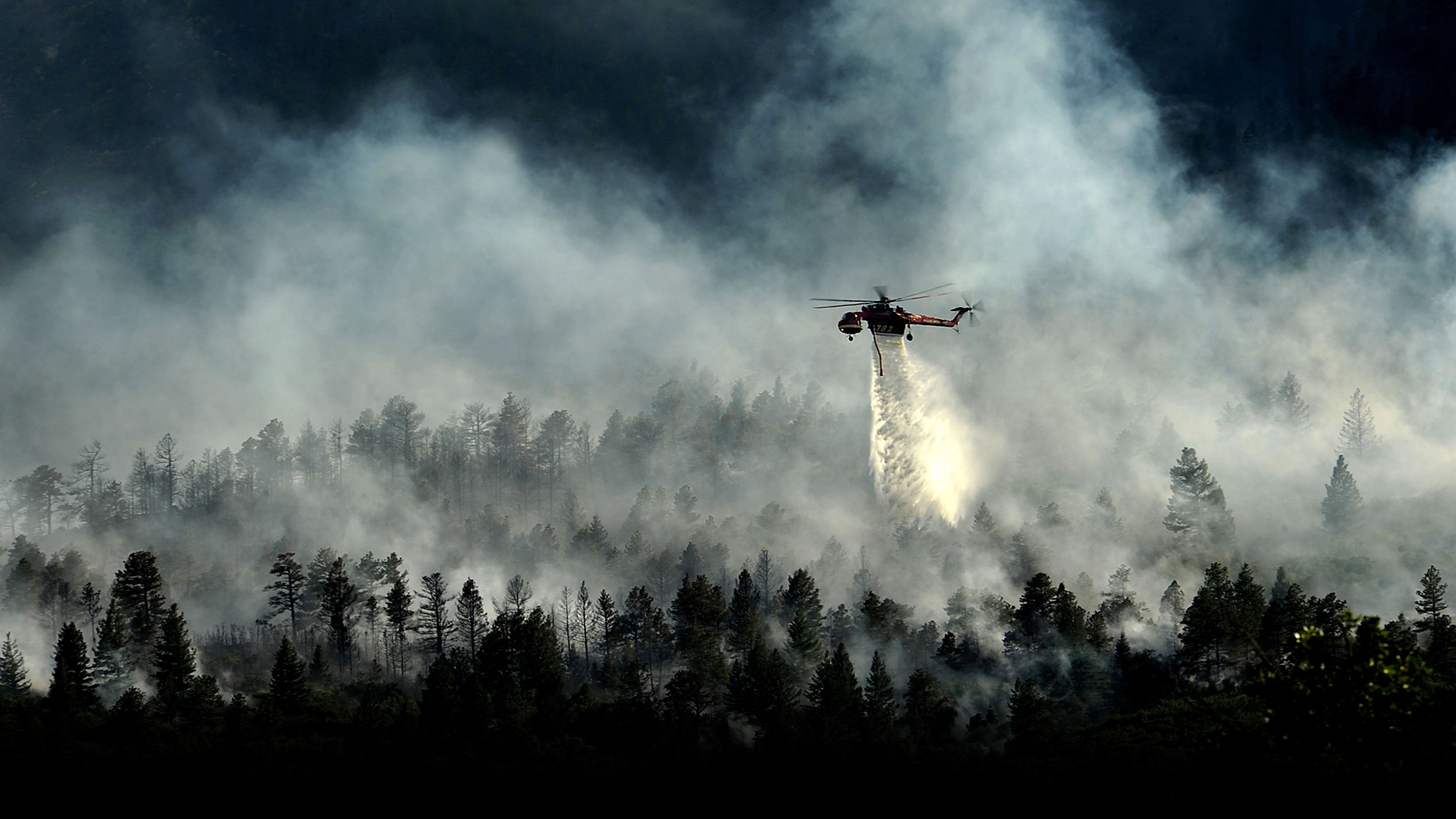 Cornea-Website-Images-Chopper-Fade.jpg