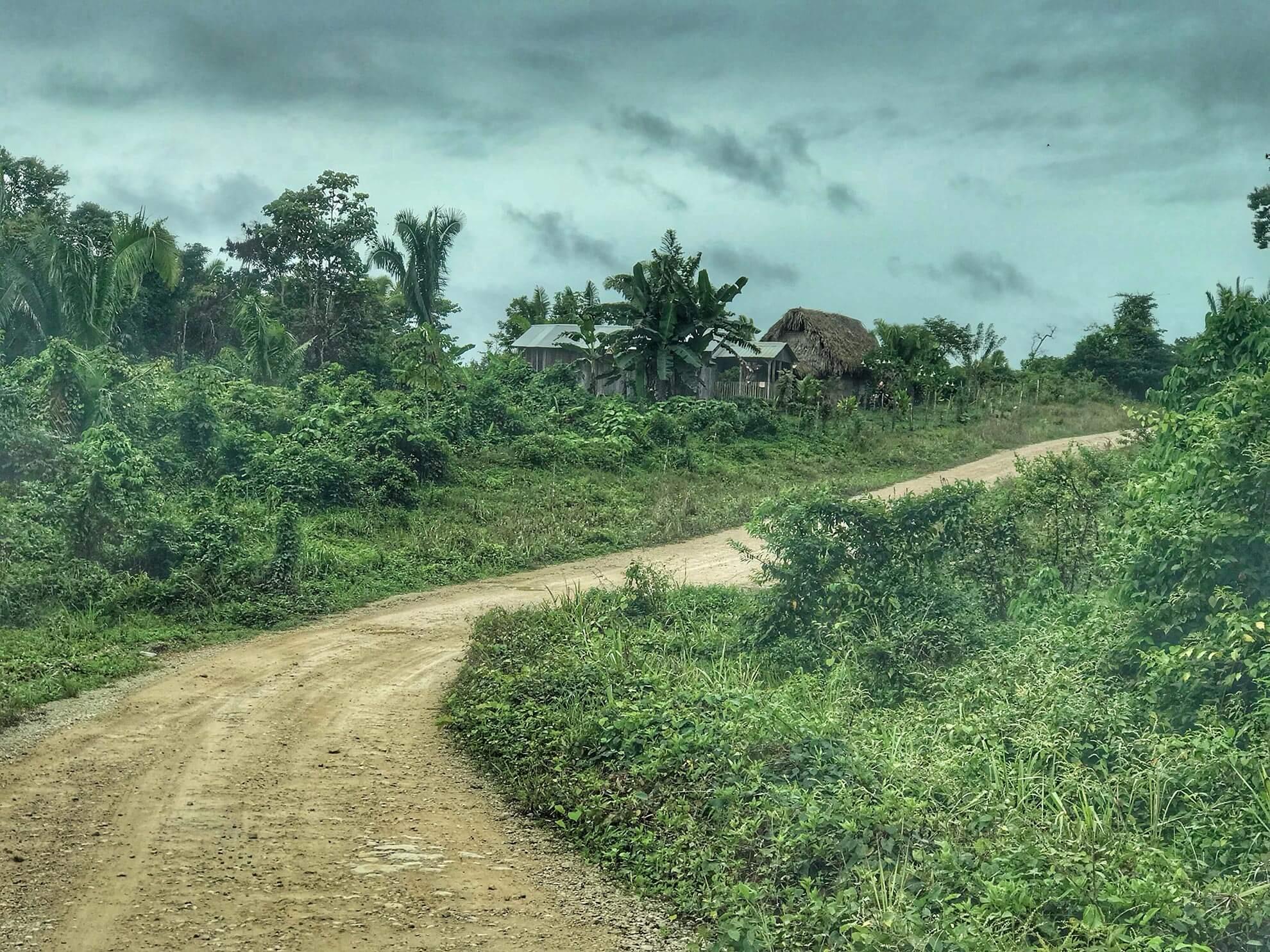 Dirt Road in Toledo District
