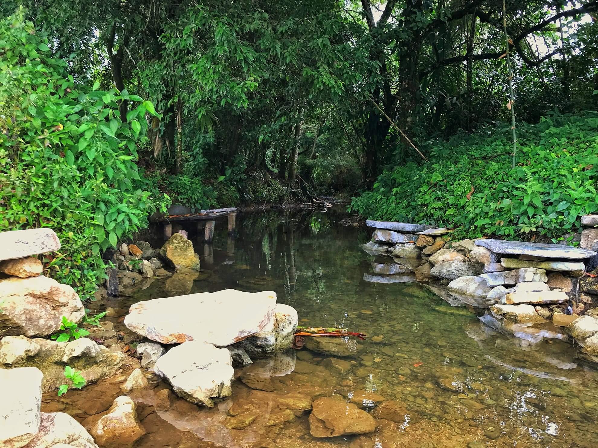 Creek in Belize