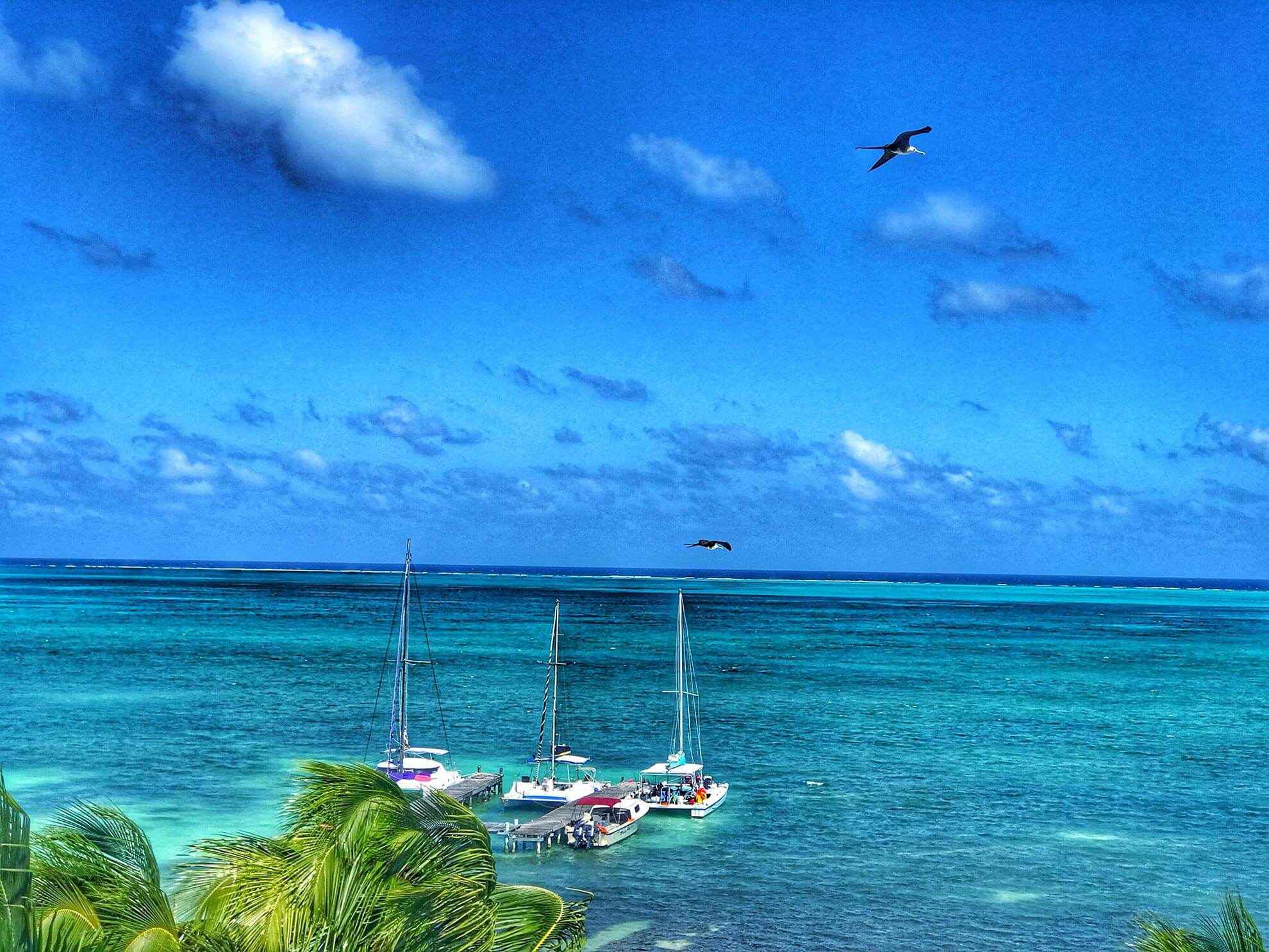 Sailboats in Belize