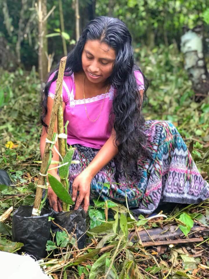 Young Belizean Woman.jpg