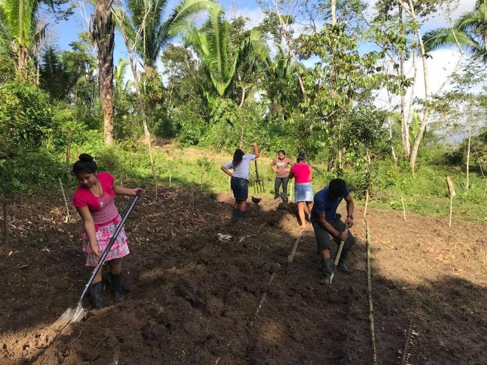 Women Farming.jpg