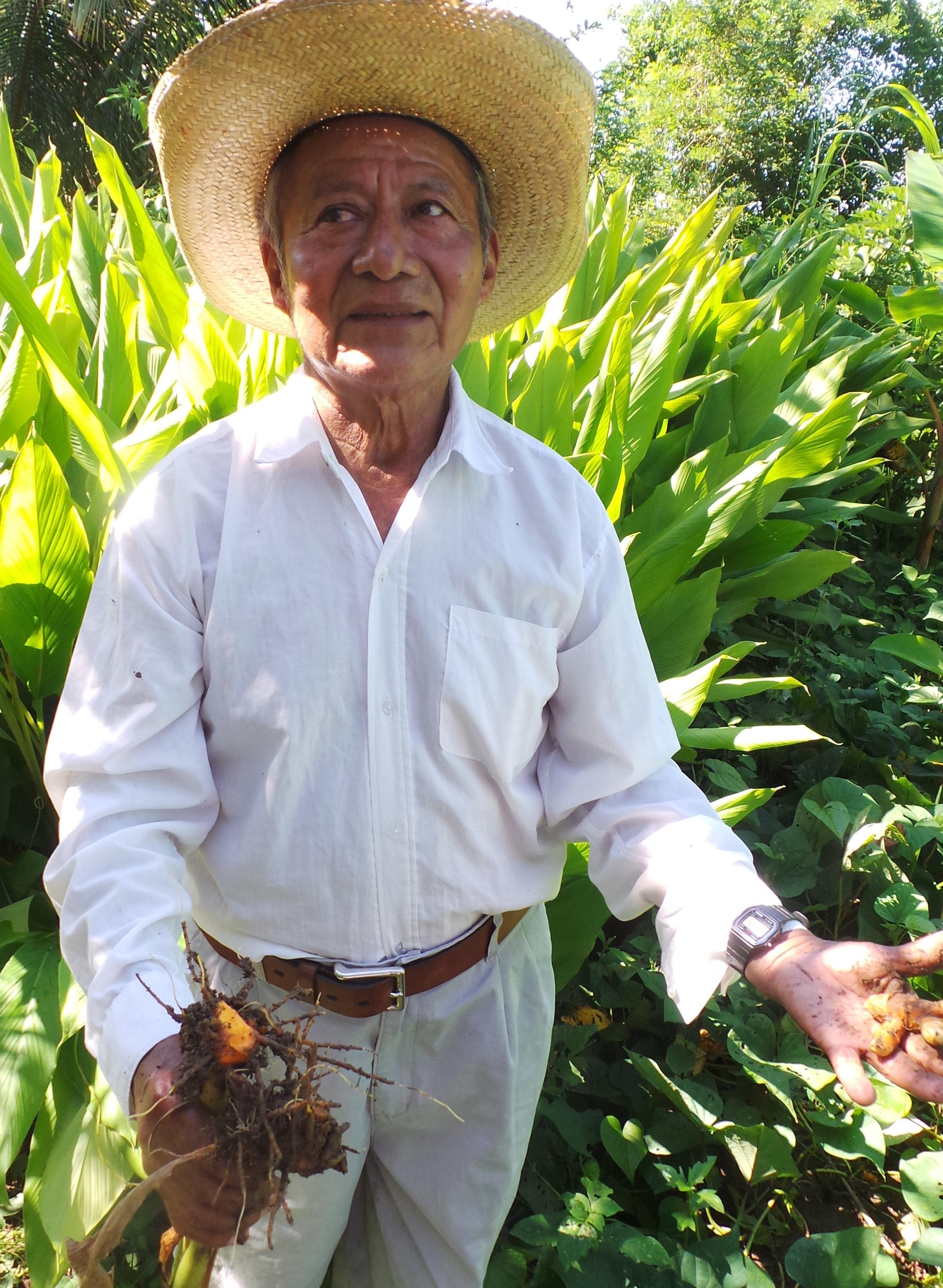 Turmeric Farmer.jpg