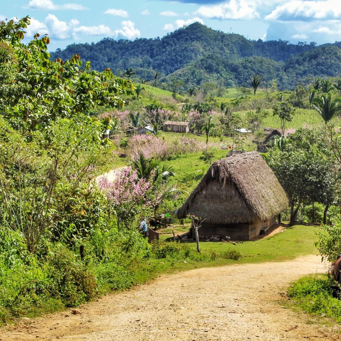 The Village of Jalacte