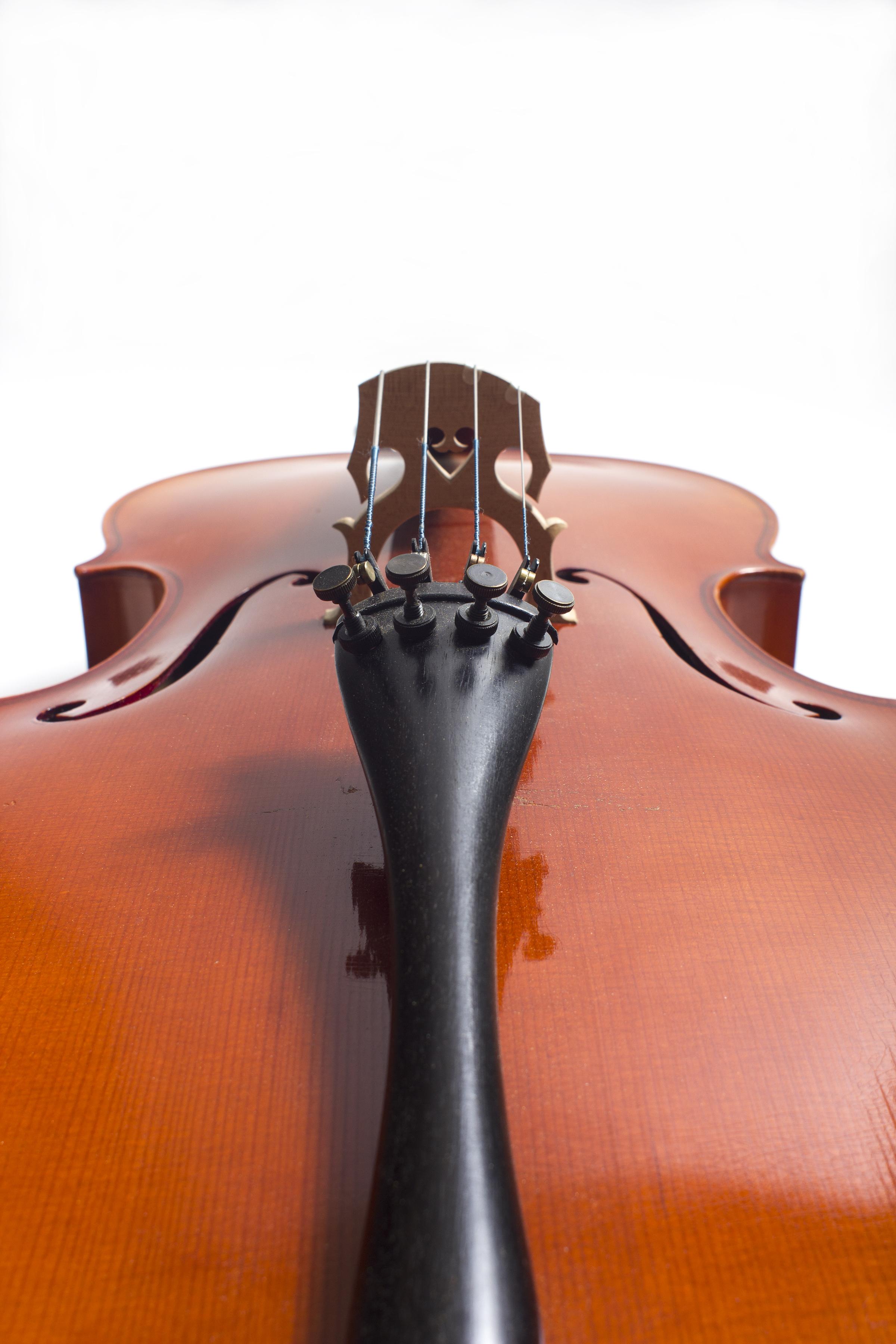 cello body.jpg