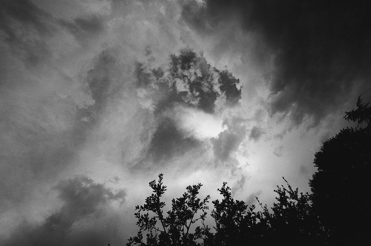 Taken on HP5 by Karl Christofferson
