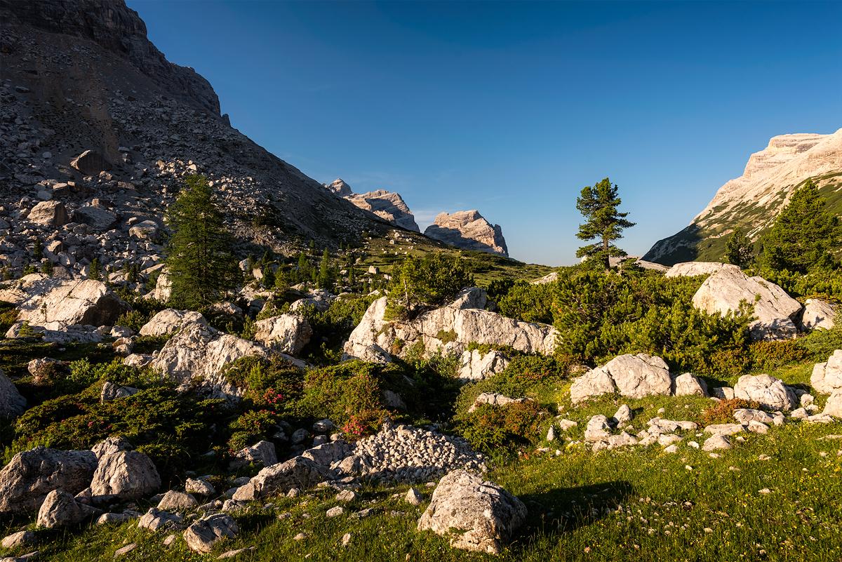 06 - 26 Dolomiti-465 copy.jpg