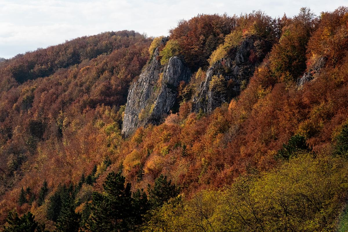 10 - 20 Valea Boiului-038-Edit copy.jpg