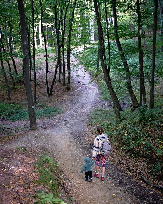 A walk into the woods. #toddlerinnature ##optoutside #alwaysmoving