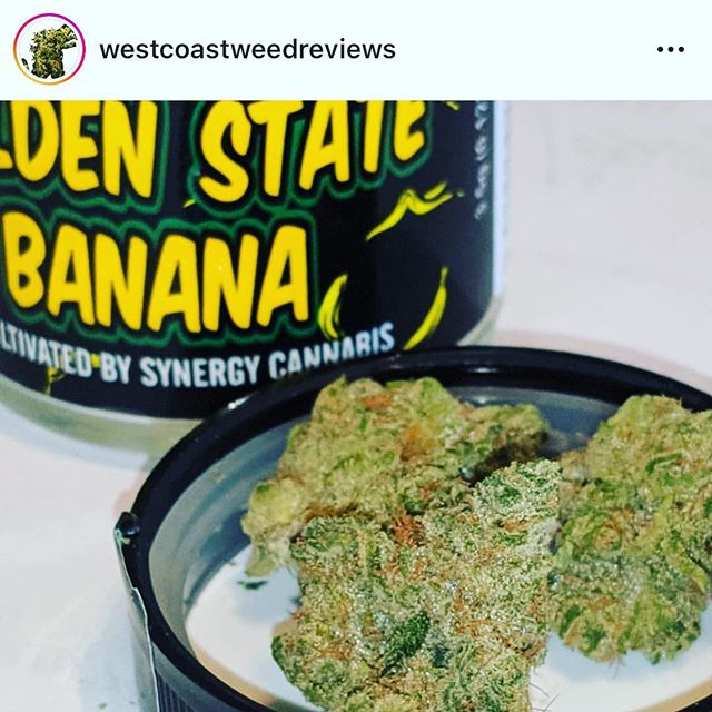 Go to @westcoastweedreviews  and check out the dope review they did! Much love guys! ✌️💛🍌 #goldenstatebanana #theresalwaysmoneyinthebananastand #anotherdayanotherbanana #gobananas