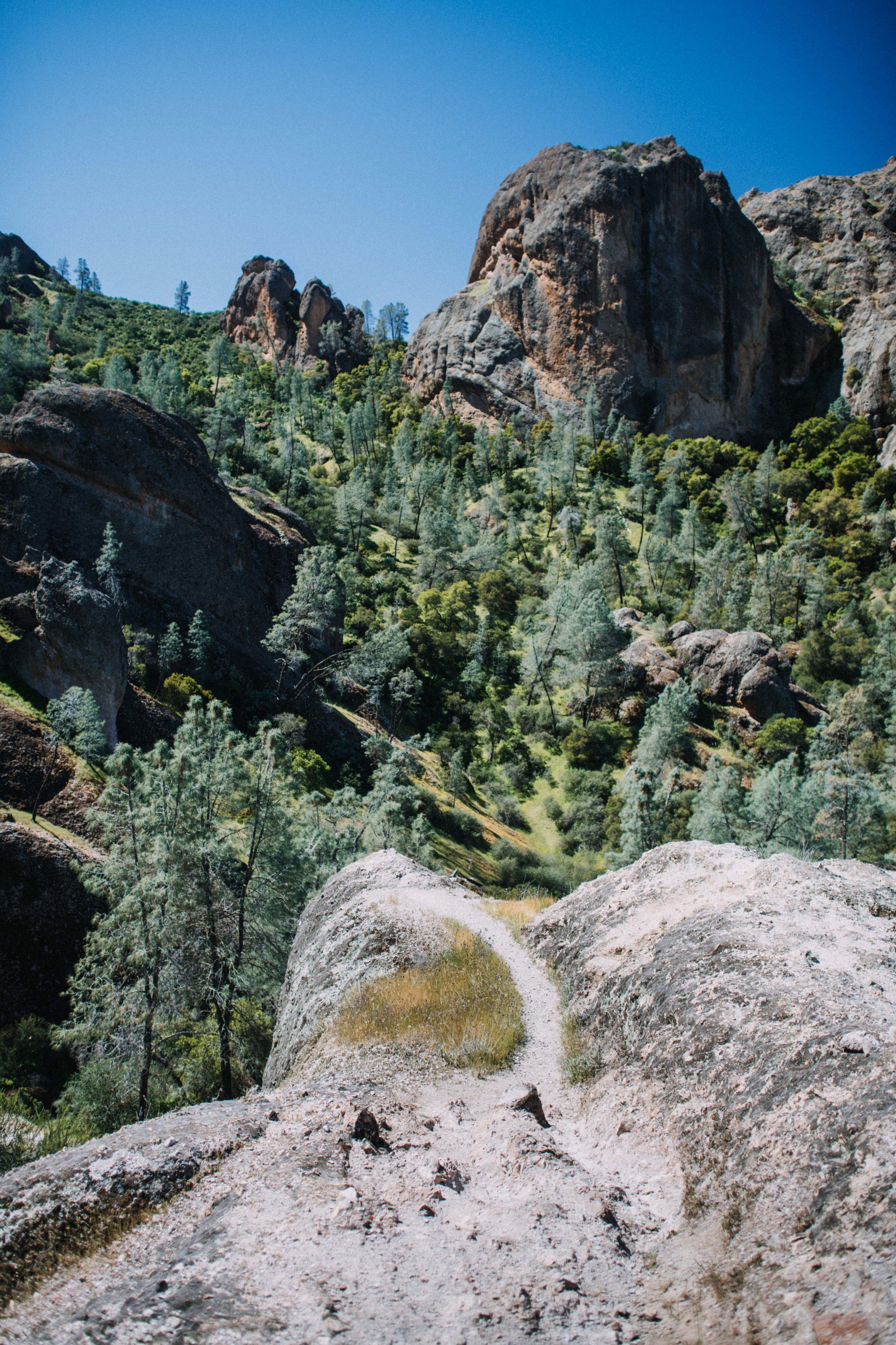 pinnacles-1991.jpg