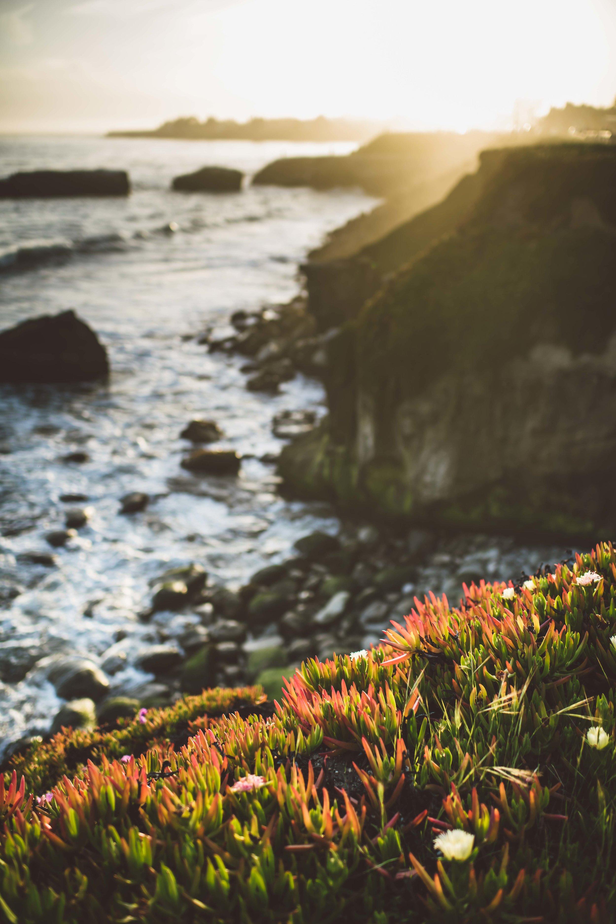 santa cruz sunset-7966.jpg