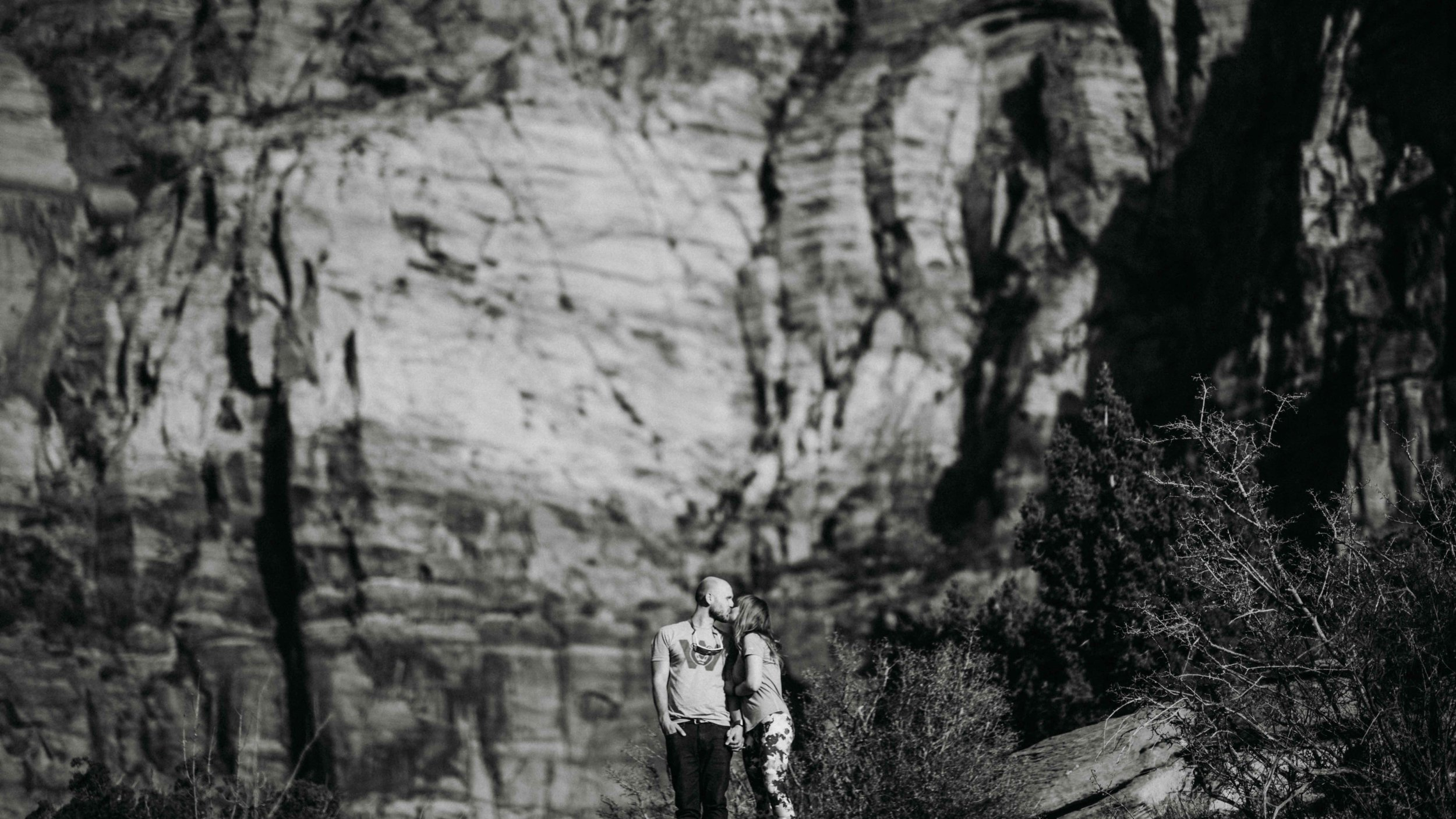 zion_national_park_utah_wedding_photography_engagement-2619.JPG