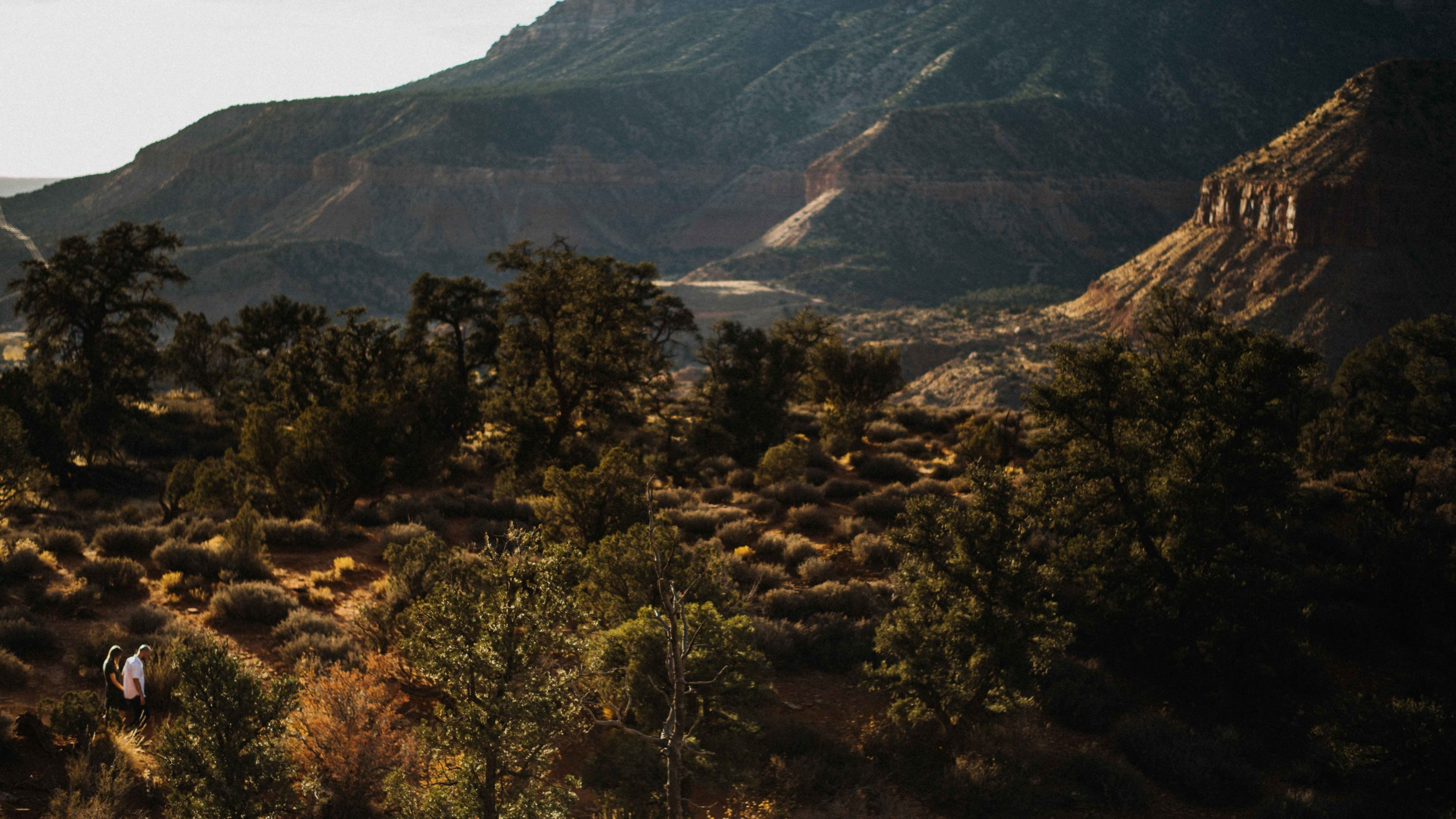 zion_national_park_utah_wedding_photography_engagement-2694.JPG
