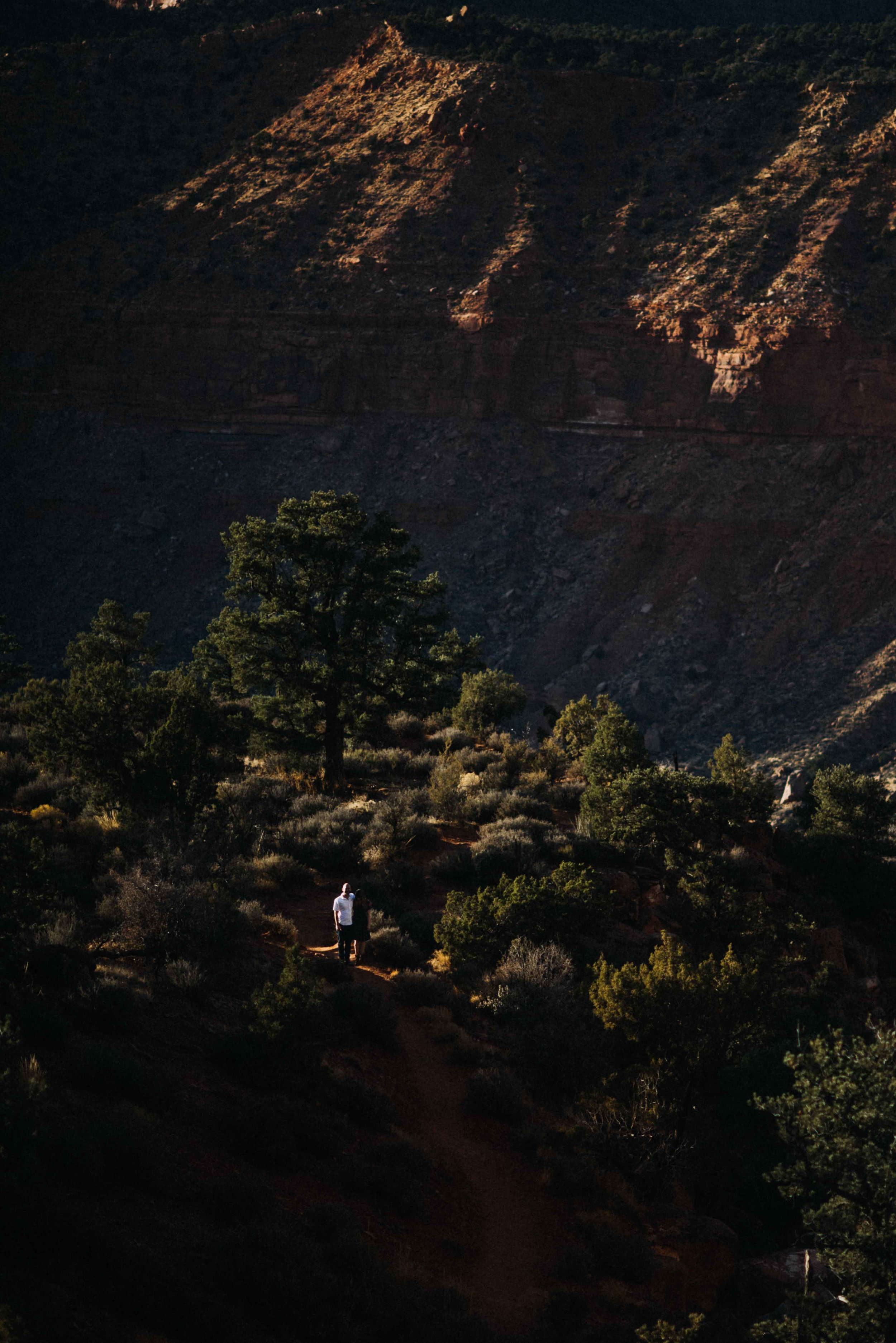 zion_national_park_utah_wedding_photography_engagement-2709.JPG