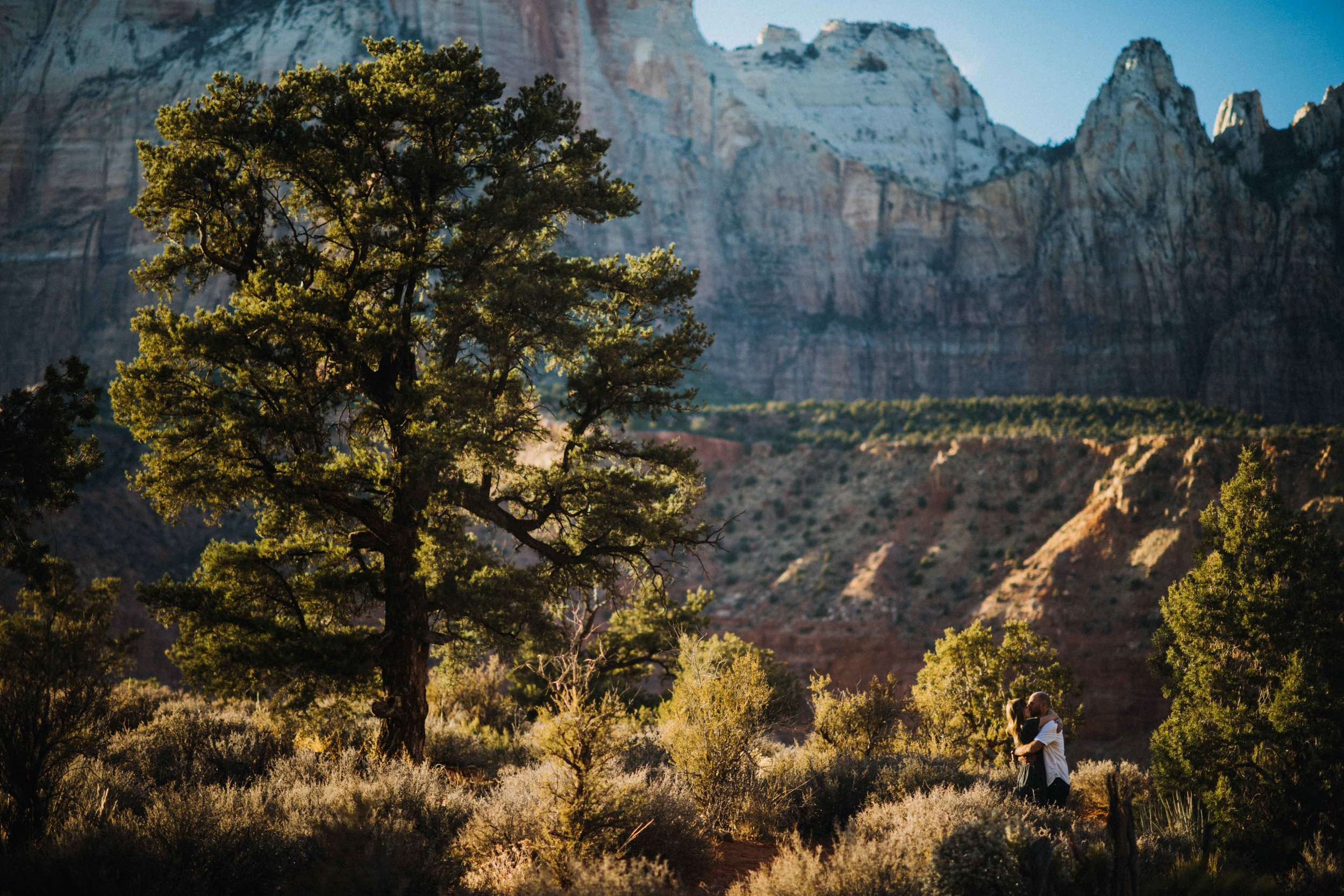 zion_national_park_utah_wedding_photography_engagement-3008.JPG